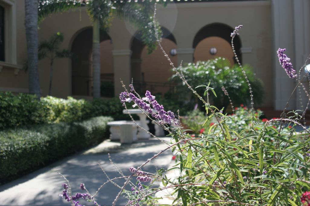 Photo of sunken garden at the Historic Courthouse in Sarasota, FL.